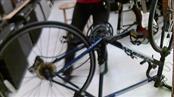 "SCHWINN MNS ROAD BICYCLE CIRCUIT 23"",25"" 24-SPEED"